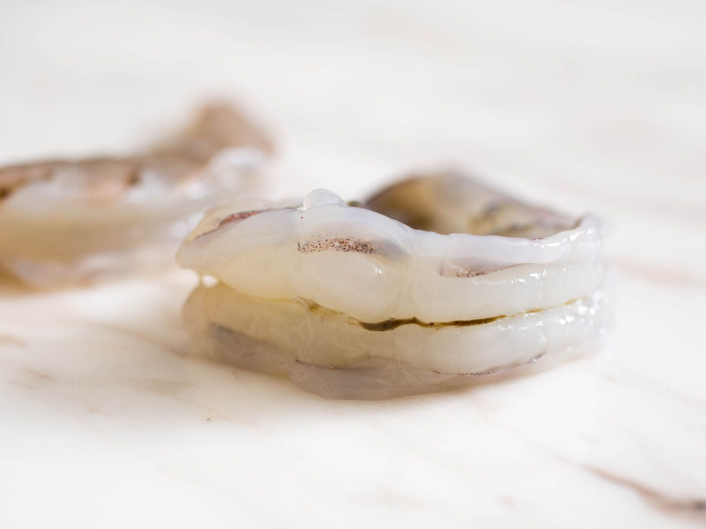 20150806-shrimp-guide-vicky-wasikx-11.jpg