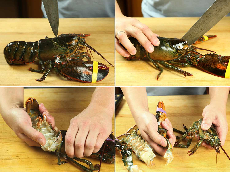20161208-sous-vide-lobster-02-breakdown.jpg
