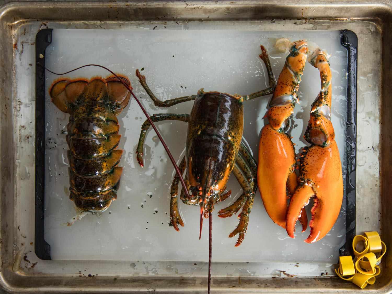 20170407-lobster-bisque-vicky-wasik-3.jpg