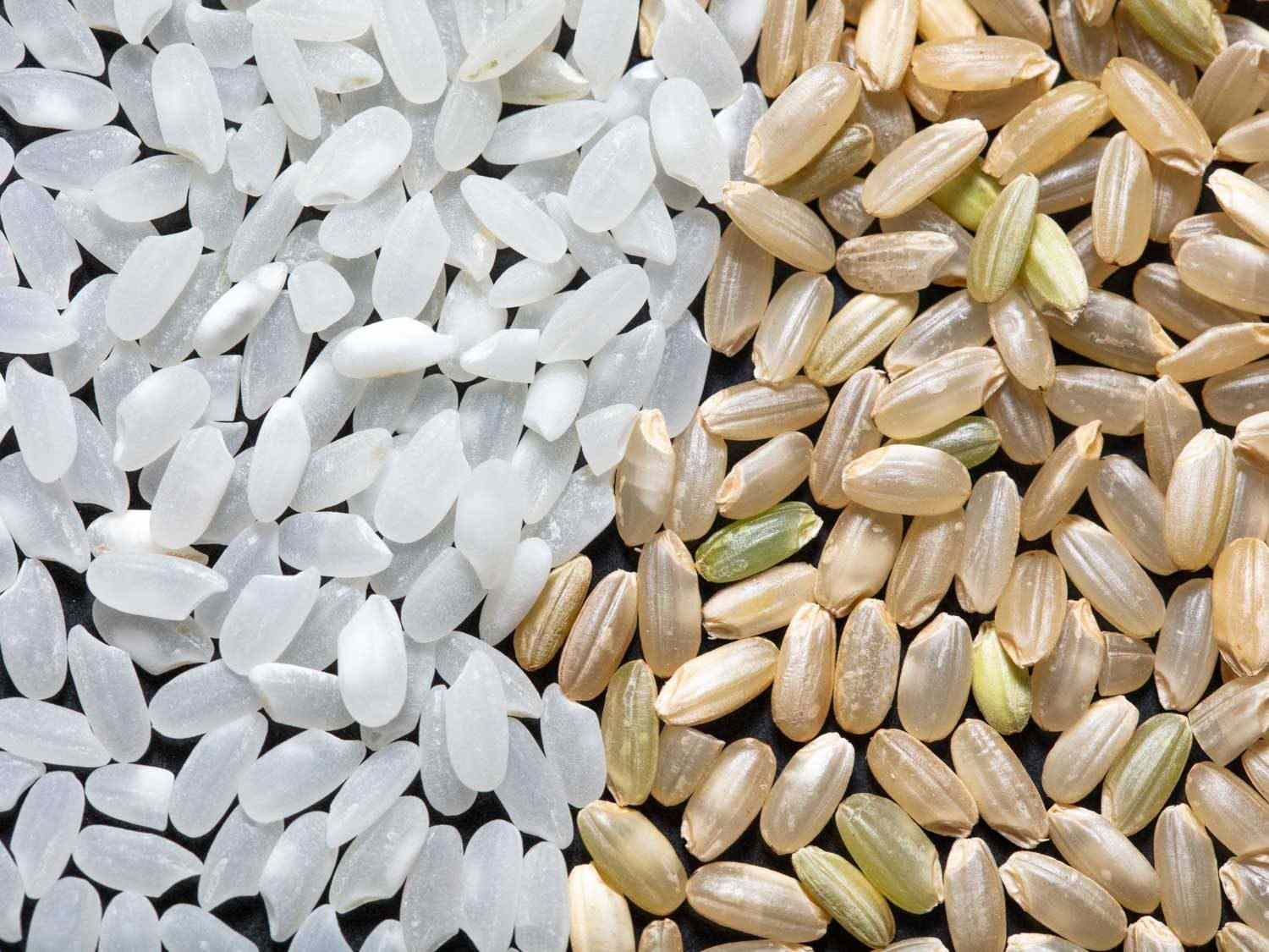 Short- to medium-grained white and brown rice