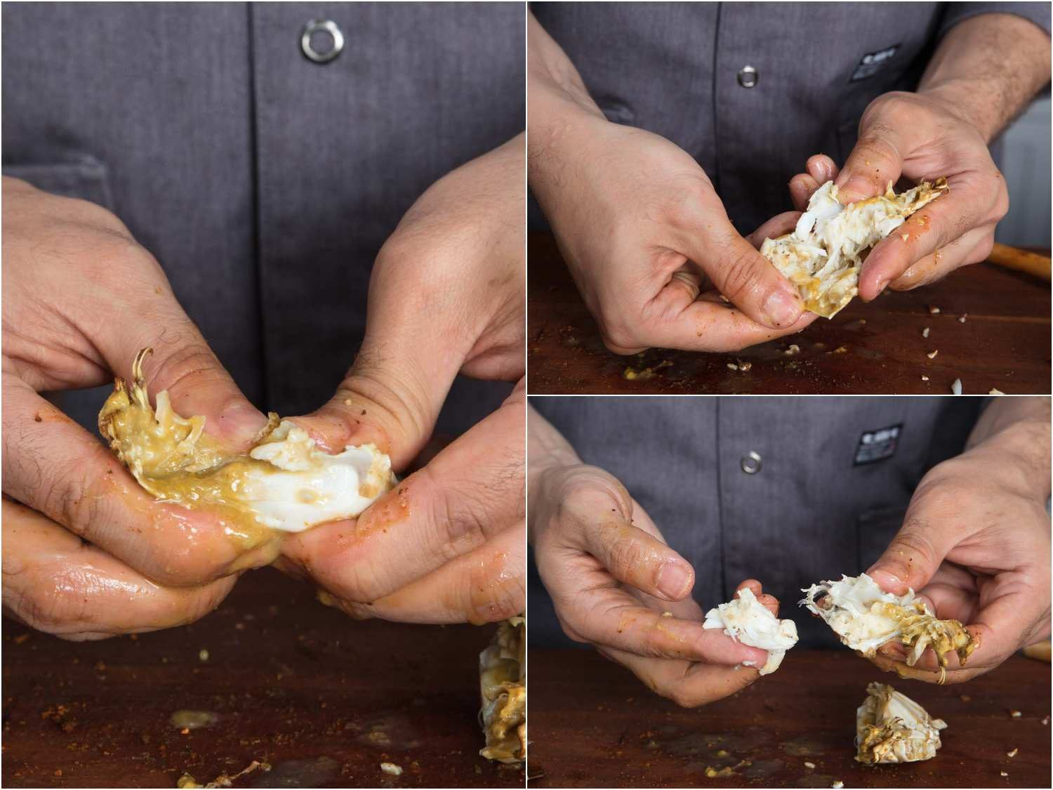Snapping half the bottom shell of a crab in half, then digging out the meat