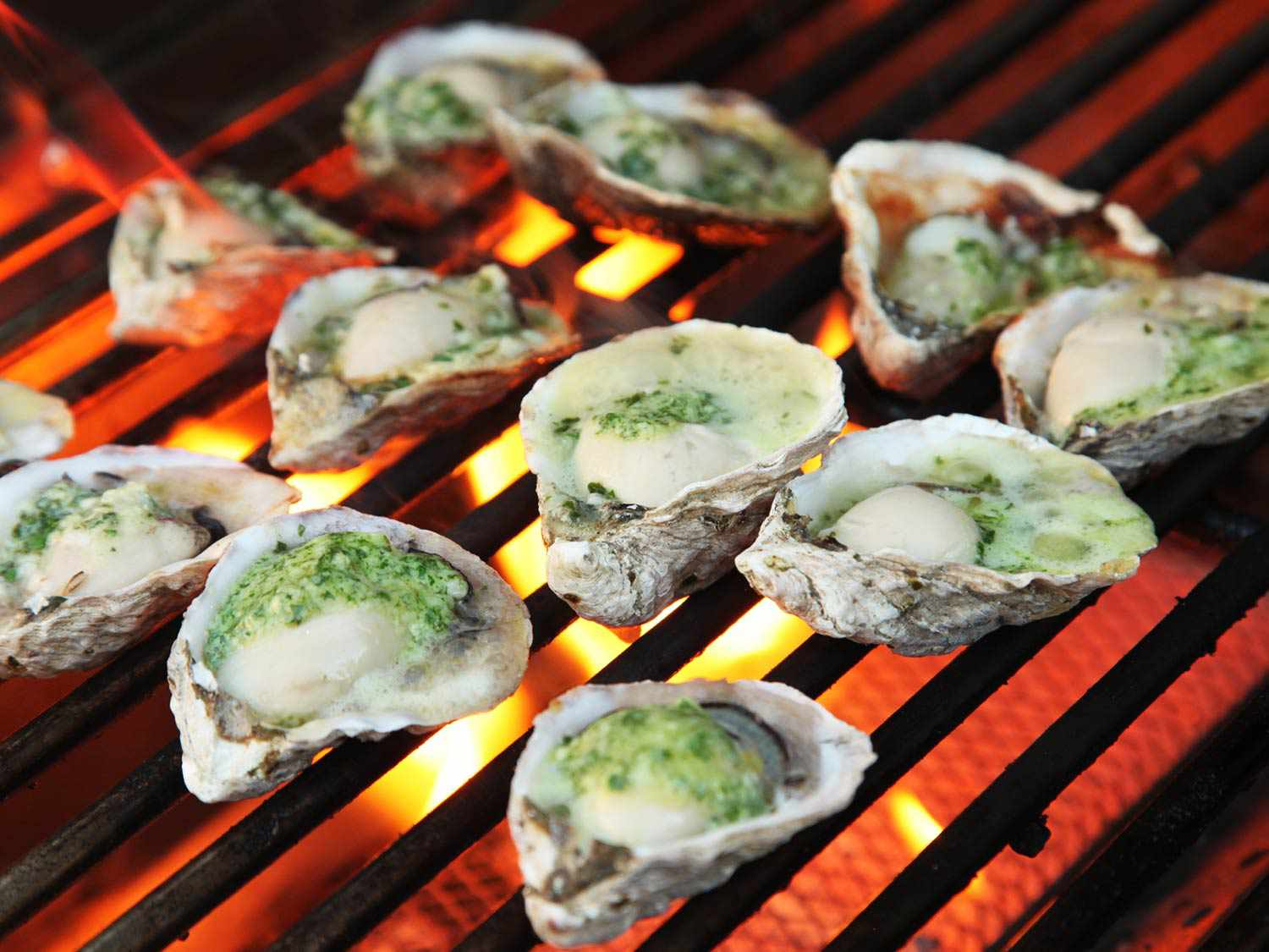20160801-grilled-oysters-12.jpg