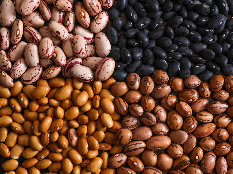 20160106-beans-vicky-wasik-1.jpg