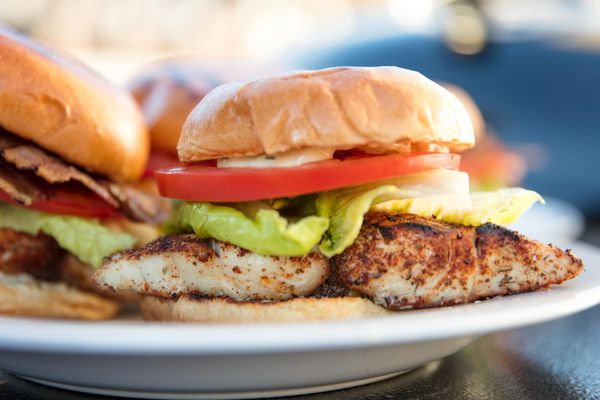20170515-grilled-fish-sandwich-vicky-wasik-14.jpg