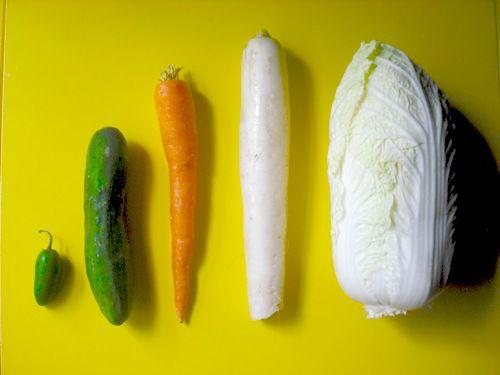 20090731-vegetables%201.JPG