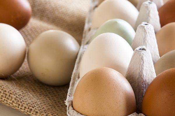 20140519-erway-eggs.jpg