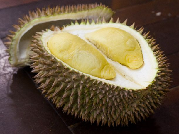 An open durian fruit.