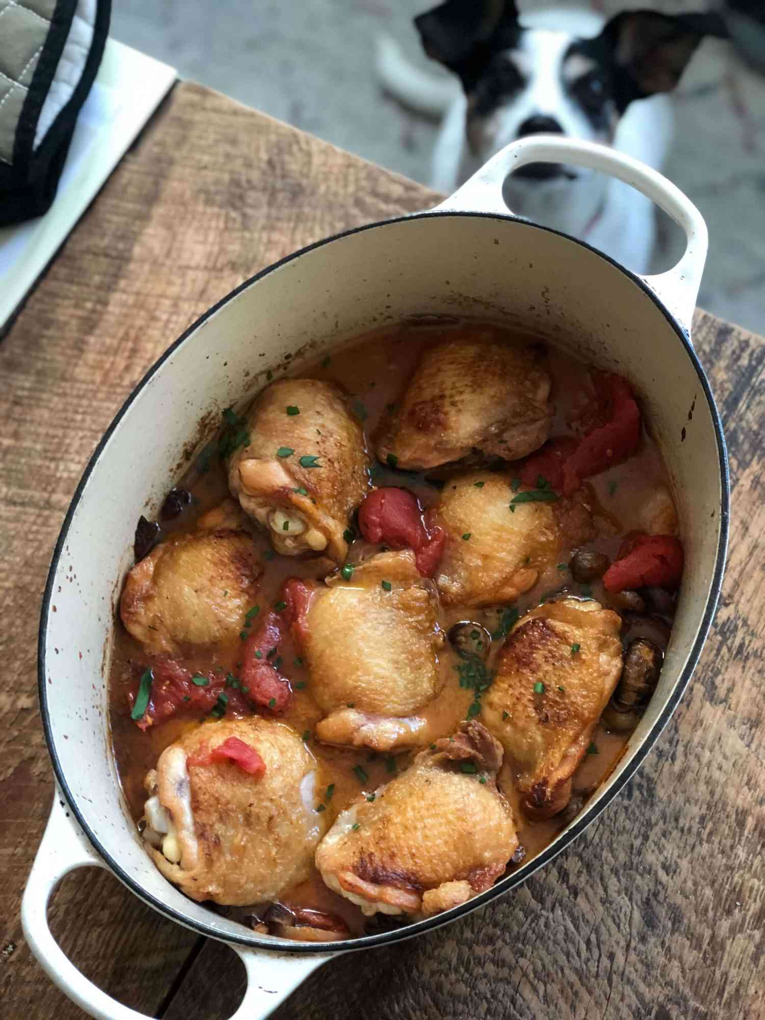 dutch oven filled with chicken cacciatore