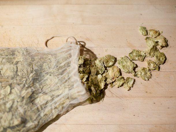 20110325-144121-Homebrew-Dry-Hopping.jpg