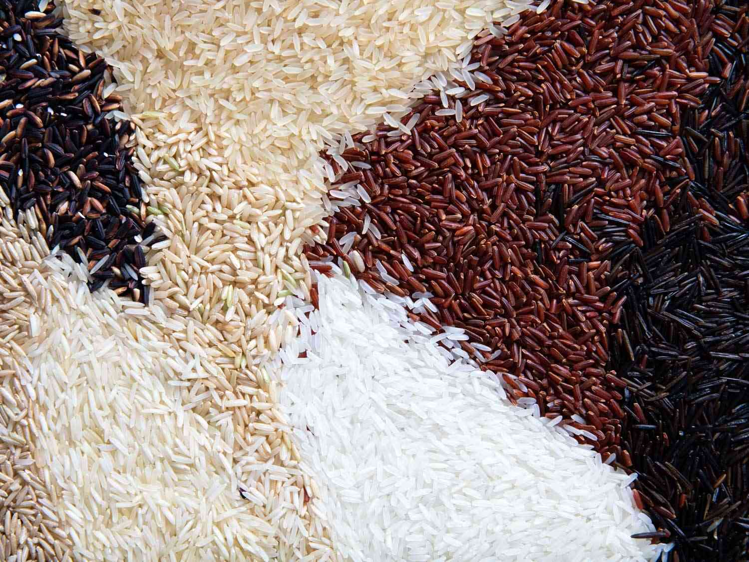 many different varieties of rice spread artfully on a surface