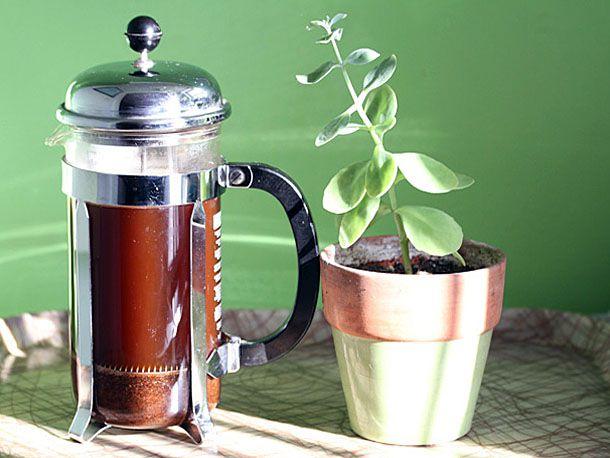 se-112812-coffee-french-press-1.jpg