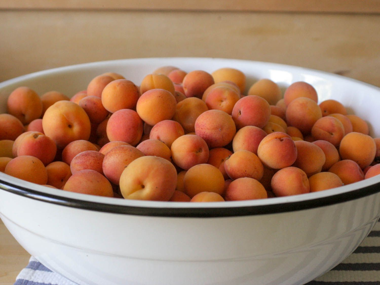 20140811-apricot-bowl-jam-101-jennifer-latham.jpg