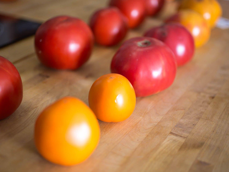 20140922-tomato-testing-part-3-vicky-wasik-3.jpg