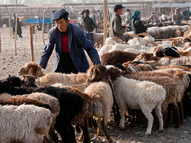 20140629-Kashgar-Sunday-Market2-FionaReilly.jpg