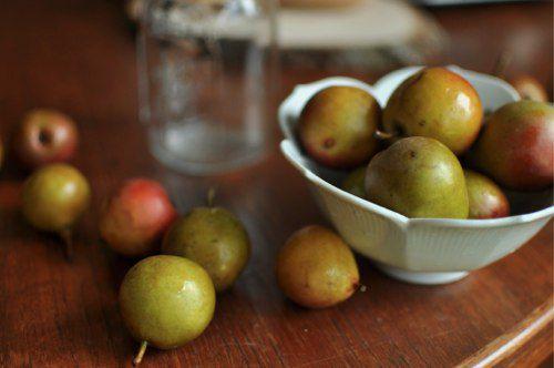 20110925-172209-seckel-pears-on-table.jpg