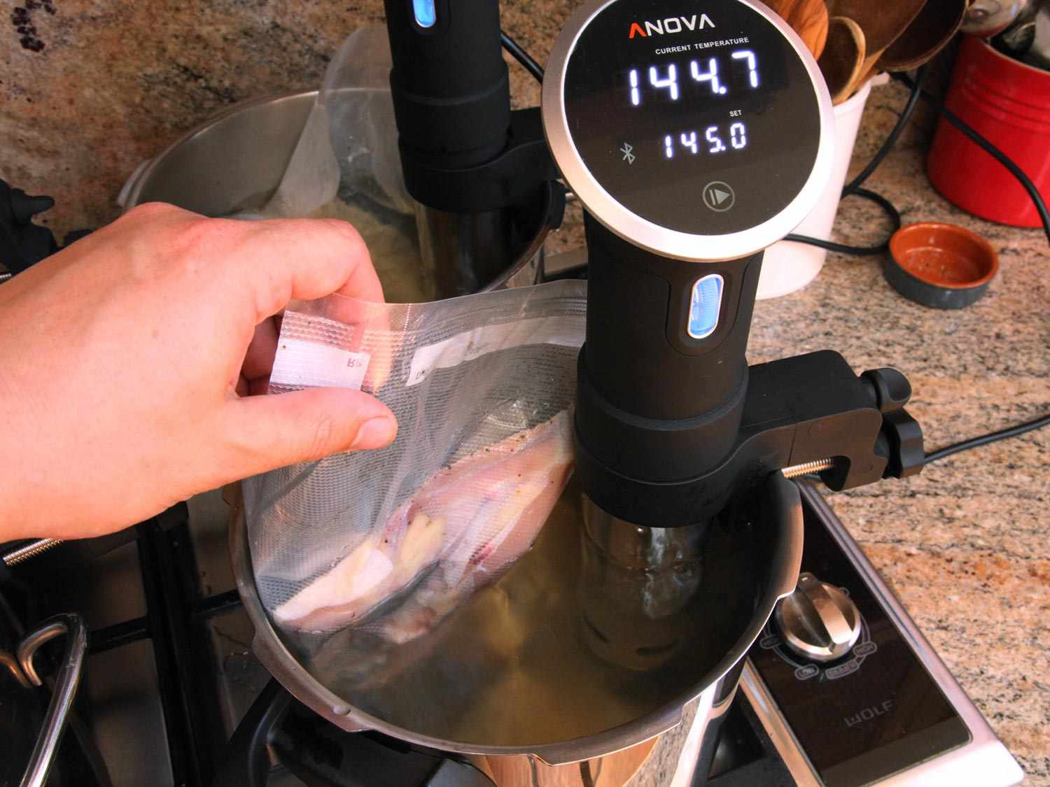 Lowering bagged chicken breast into a pot of water with a sous vide precision cooker attached