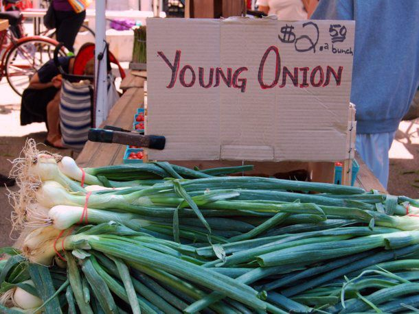 Bunches of spring onions on a stand at a farmers market.