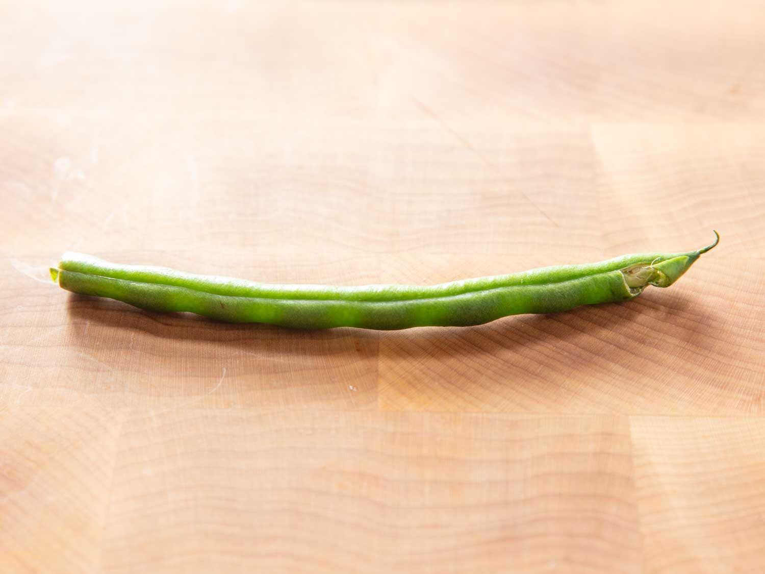Closeup of a green bean that needs to be trimmed at both ends because it has been damaged at the bottom.