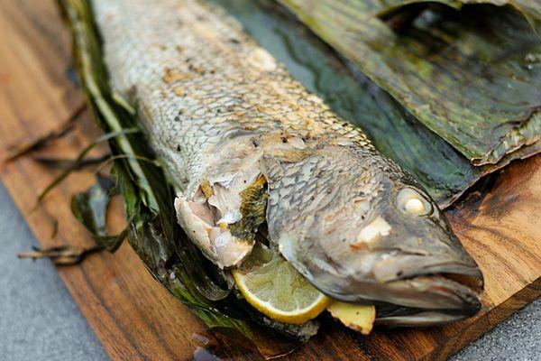 20110828-168176-stuffed-fish.jpg