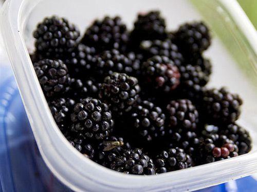 20090925-blackberries-primaryctbcakerecipe.jpg