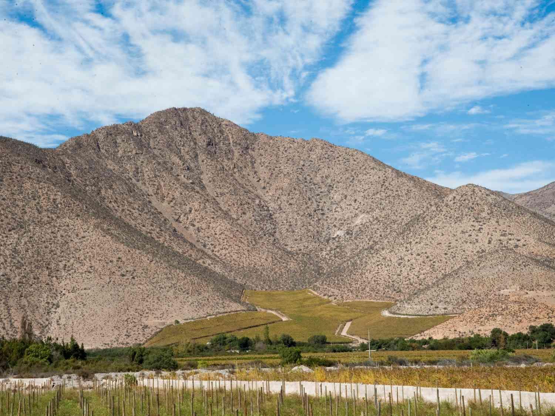20150713-chilean-wine-valle-del-elqui-NAF7572-nicolas-aguayo-fuenzalida.jpg