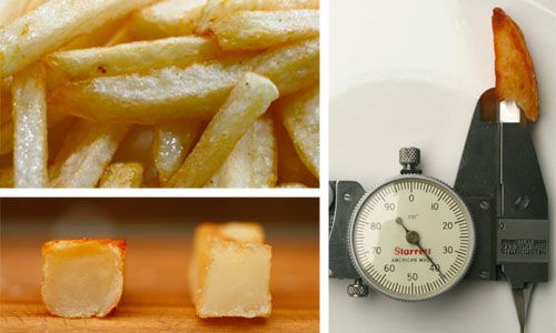 20100115-french-fries-opener.jpg