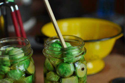20120102-185976-bubbling-sprouts.jpg
