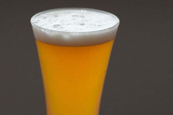 A glass of homemade American Wheat Ale.
