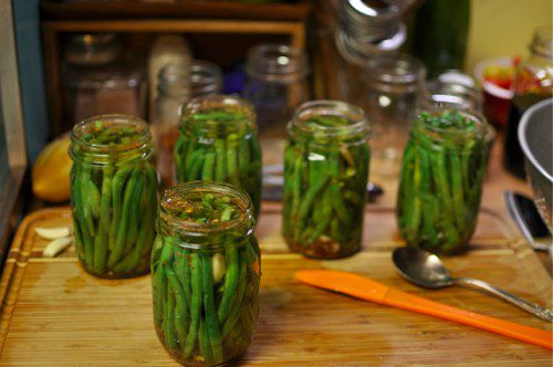 Jars filled with green beans, spices, and pickling brine
