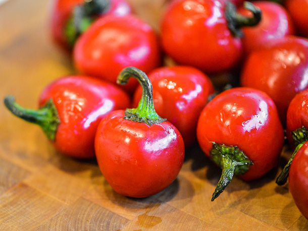 20140110-279606-stuffed-cherry-peppers-peppers.jpg