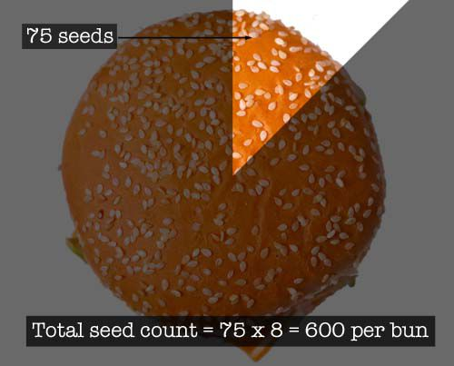 20110512-big-mac-burger-lab-seed-count copy.jpg