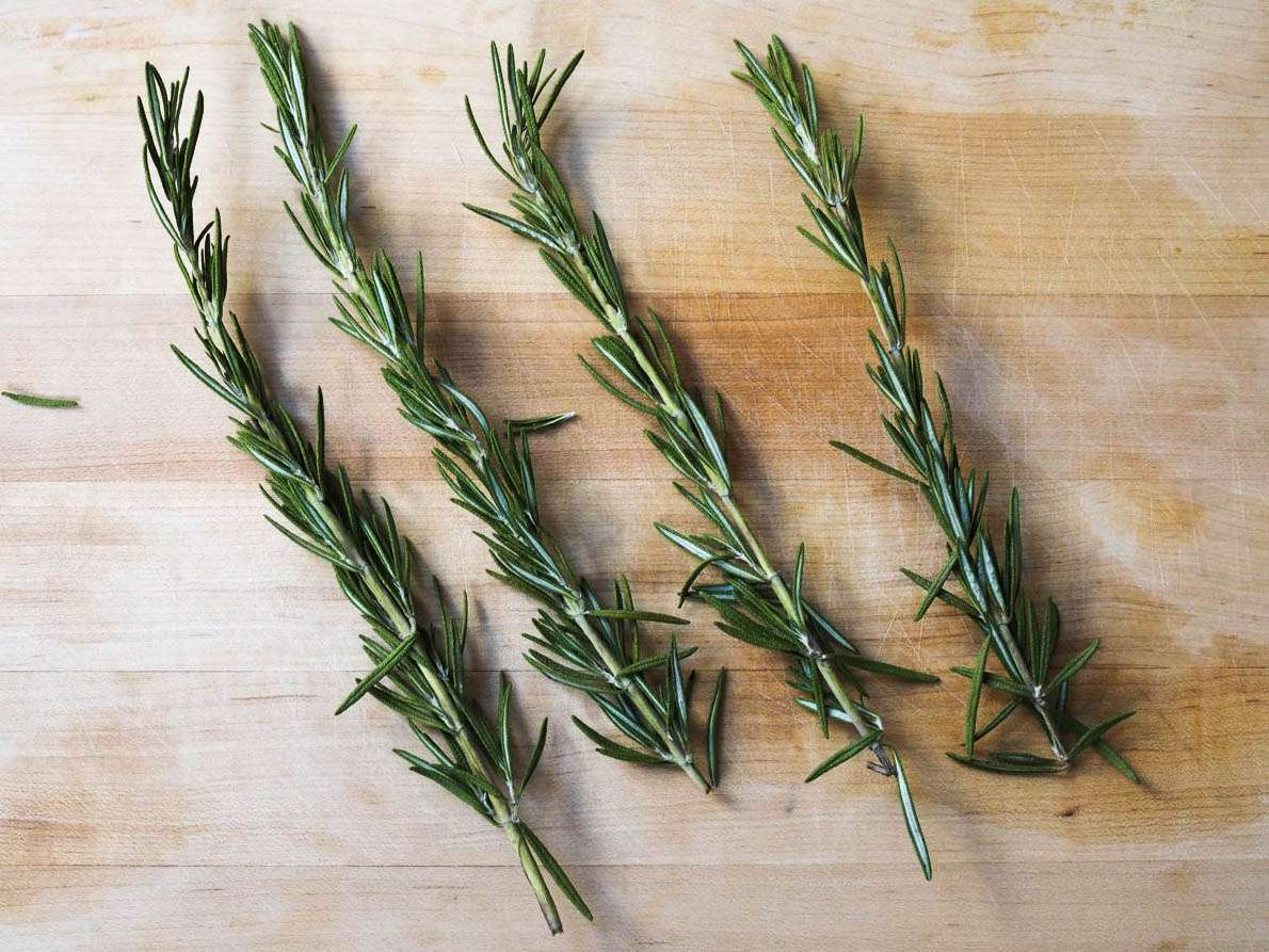 Four sprigs of rosemary on a wood table.