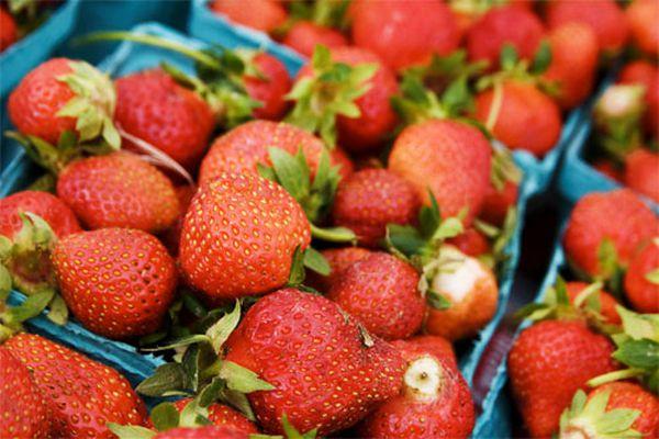 201000506-strawberries-500.jpg