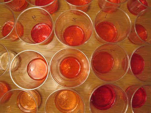 20110522-153183-strawberry-soda-cups.jpg