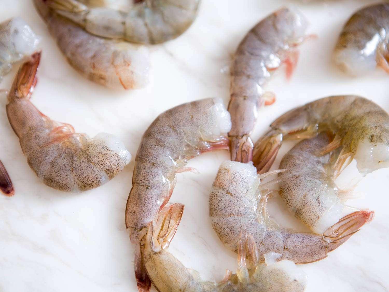 20150806-shrimp-guide-vicky-wasikx-10.jpg