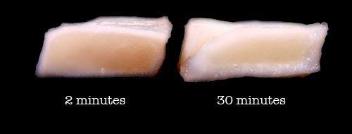 20110720-food-lab-ceviche-7 copy.jpg