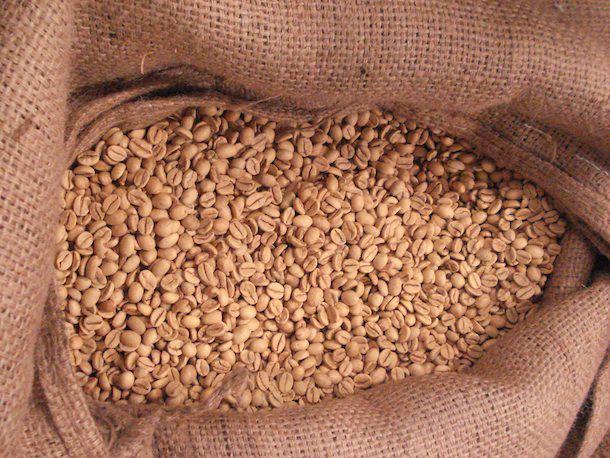 20131005-beans.jpg