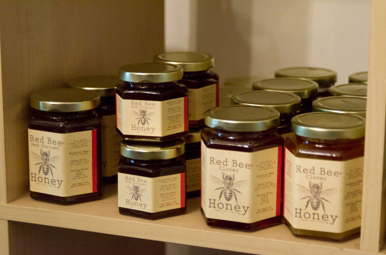 20140617-honey-bees-max-falkowitz-jars.jpg