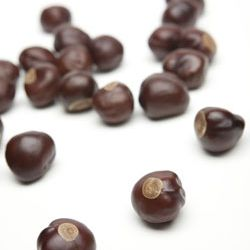 20140528-buckeye-nut.jpg