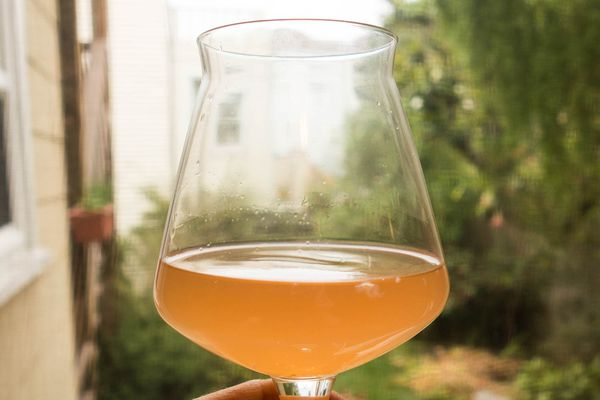 20150723-brewing-a-fast-sour-beer-steve-hoyt.jpg