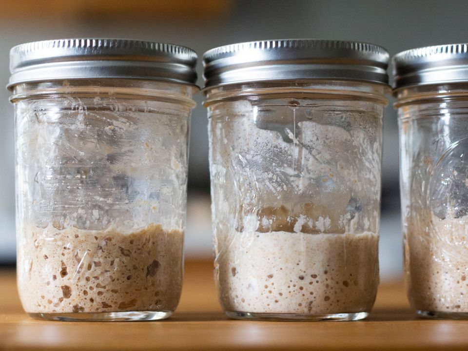 Bubbly sourdough starters in glass jam jars
