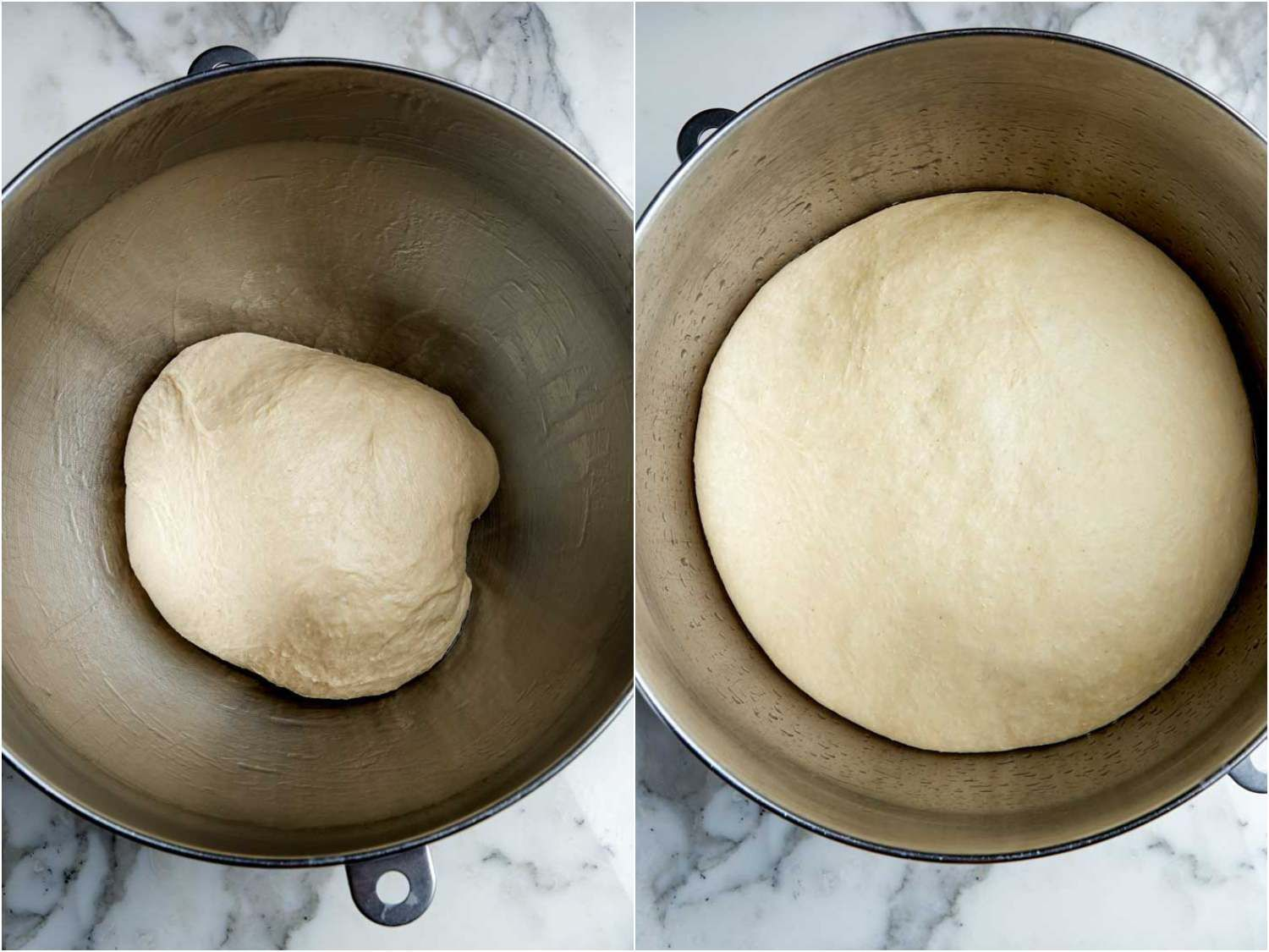 Apple cider doughnut dough before and after its first rise in the bowl, where it more than doubles in bulk