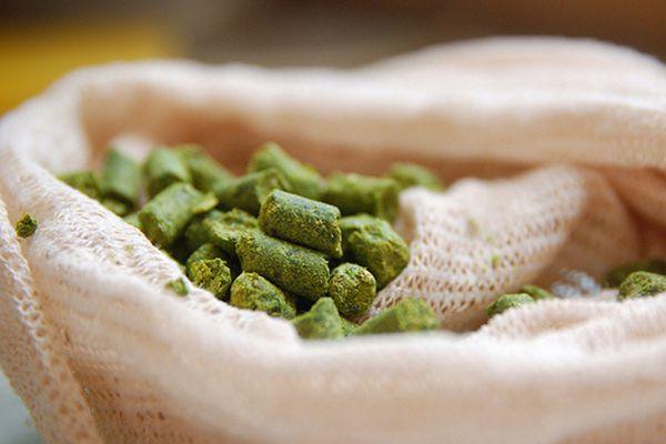 A burlap bag of pelletized hops.