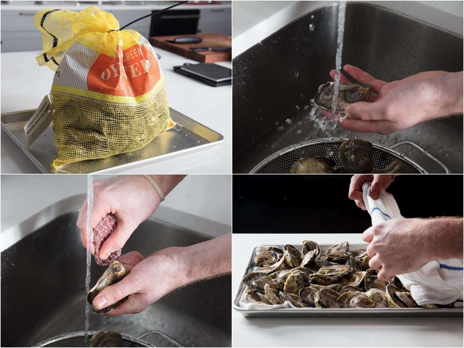 Scrubbing and storing oysters