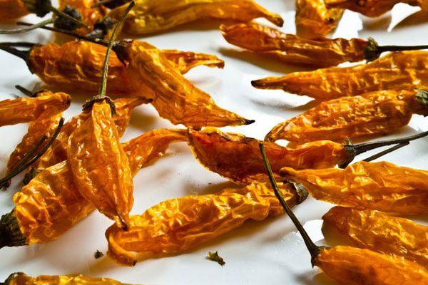 20110526-153368-lemon-drop-chile-peppers.jpg