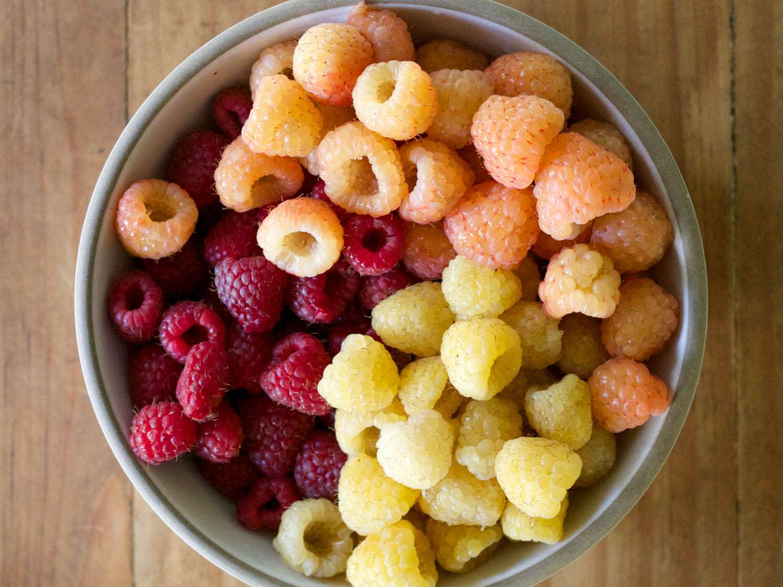 20140727-berry-guide-three-raspberries-jennifer-latham.jpg