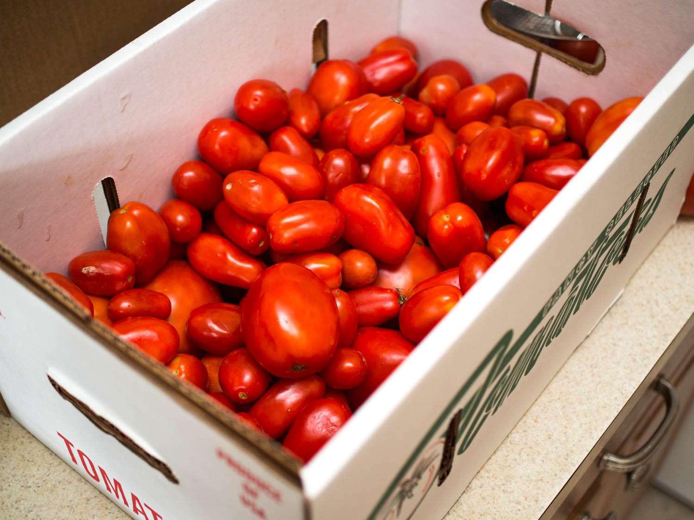 A cardboard carton of plum tomatoes