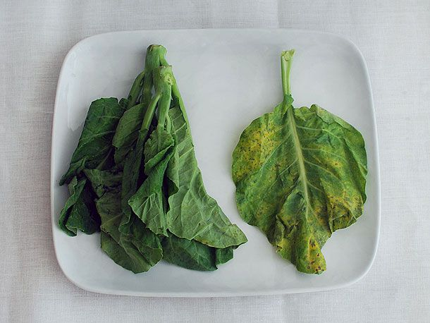 A plate with two piles of fresh Chinese broccoli greens. On the right, the greens have yellow and dark spots that should be avoided.