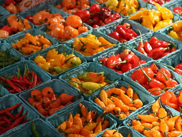 20140211-valentines-day-hot-peppers.jpg